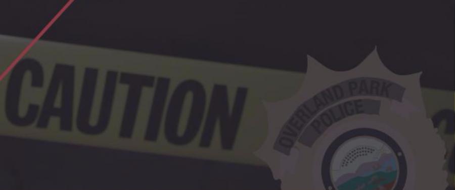 Investigating Assault
