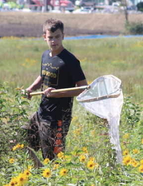 "Shaking a net, sophomore Mac Demo walks through the field. ""[Catching butterflies] was a fun way to get extra credit for the class,"" Demo said."