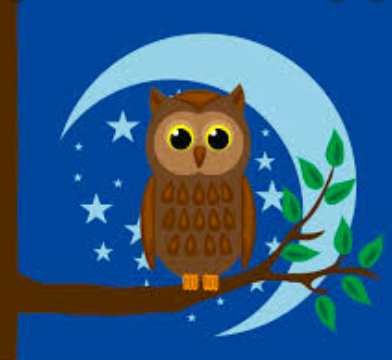 Could being a night owl be harming you?